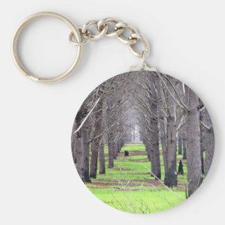 Plantación del pino cubierta por la hierba llaveros personalizados
