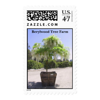 Plantación maderera de Berylwood Sello Postal