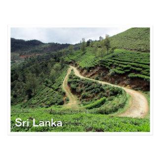 plantaciones de té Sri Lanka Postal
