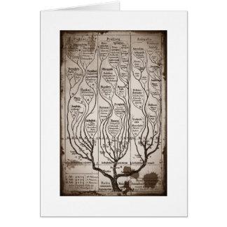 Plantae Protista Animalia Card