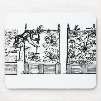Plantando en camas aumentadas del Laby del jardi Alfombrilla De Ratones