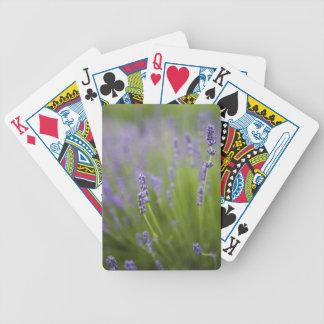 Plantas 2 de la lavanda baraja de cartas