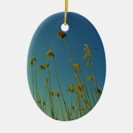 plantas adorno ovalado de cerámica