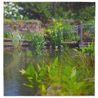 Plantas de agua en los jardines de Powell de la ch Servilleta