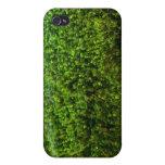 Plantas de agua subacuáticas en la charca iPhone 4 fundas