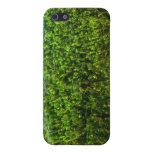 Plantas de agua subacuáticas en la charca iPhone 5 fundas