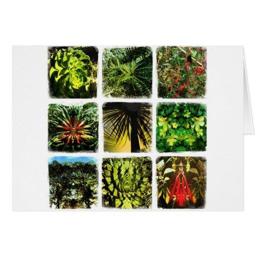 Plantas de Dali Tarjeta De Felicitación