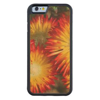 Plantas de hielo (Lampranthus aurífero) en la Funda De iPhone 6 Bumper Arce