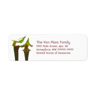 Plantas de jarra carnívoras etiqueta de remite