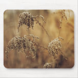 Plantas del otoño, sepia, pacífica alfombrilla de raton