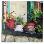 Plantas en el pórtico azulejo
