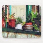 Plantas en el pórtico tapetes de ratón