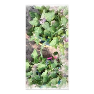 Plantas en la cocina casera tarjeta personal con foto