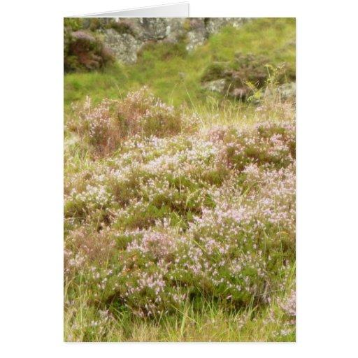 Plantas florecientes tarjeta de felicitación
