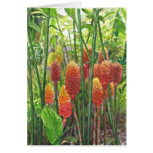 Plantas hawaianas del jengibre tarjeta de felicitación
