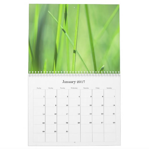 Plantas hermosas 2 - calendario 2011