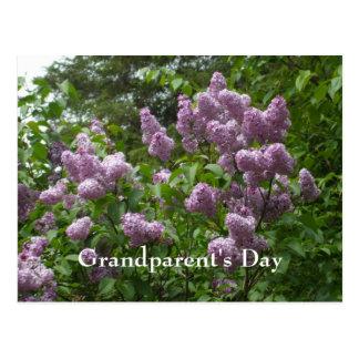 Plantas leñosas Bush-Syringa-Florecientes de la Postales