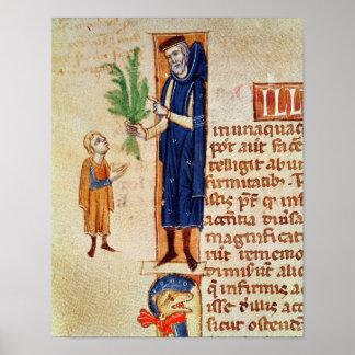 Plantas medicinales poster