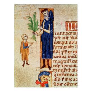 Plantas medicinales tarjetas postales