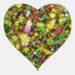 Plantas multicoloras de los Succulents abigarrados Pegatina En Forma De Corazón