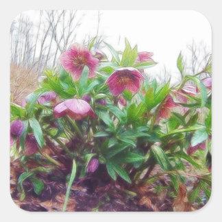 Plantas perennes del Hellebore en el jardín Pegatinas Cuadradases