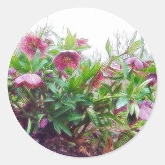 Plantas perennes del Hellebore en el jardín Pegatina