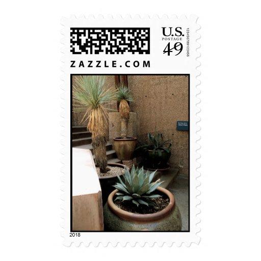 Plantas potted frescas sellos