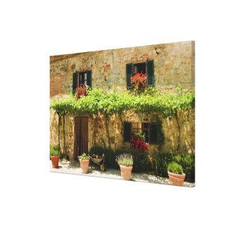 Plantas Potted fuera de una casa, plaza Roma, Impresión De Lienzo