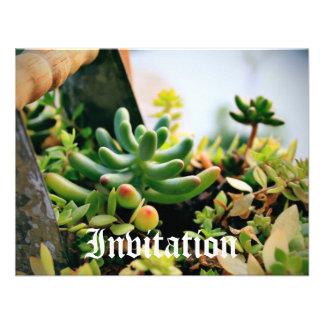 Plantas Potted preciosas Invitaciones Personalizada
