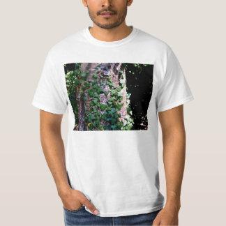 Plantas que suben en árbol en bosque playeras