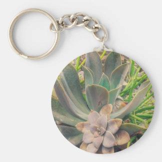 Plantas suculentas bonitas llavero redondo tipo pin