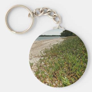Plantas suculentas en la playa llavero