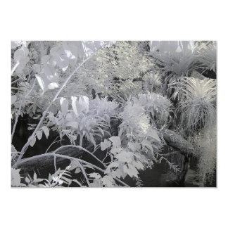 """Plantas tropicales/fotografía infrarroja invitación 5"""" x 7"""""""
