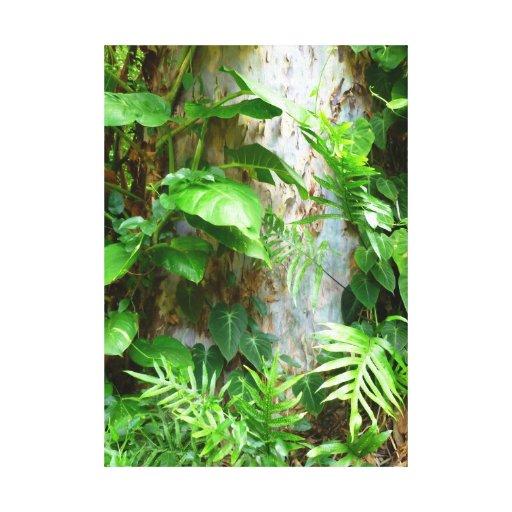 Plantas tropicales impresiones en lona estiradas