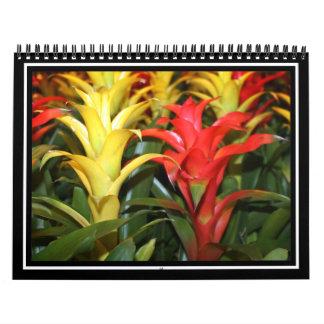 Plantas tropicales rojas y amarillas calendarios de pared