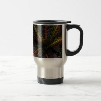 Plantas tropicales tazas de café