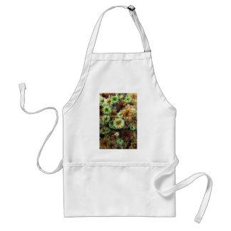 plantas verdes del bosque delantal