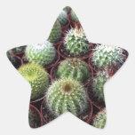 Plantas verdes del cactus pegatinas forma de estrella