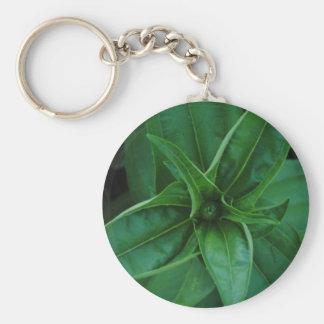 Plantas verdes llavero