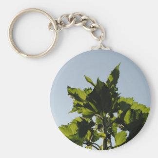 Plantas verdes llaveros personalizados