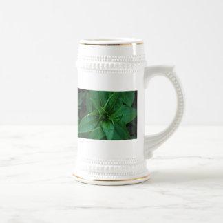 Plantas verdes tazas de café