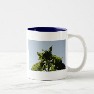 Plantas verdes taza de dos tonos