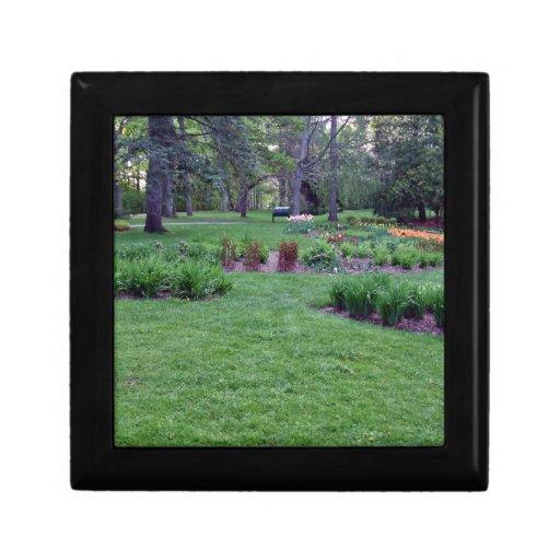 Plantas y flores en un parque hermoso joyero cuadrado pequeño