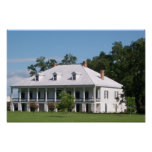 Plantation House 3 Poster