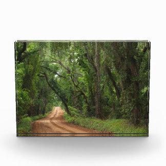 Plantation Road Scenic Background Award