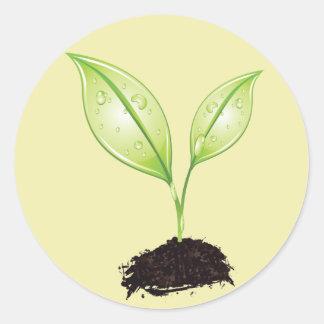 Plante la hoja de la tierra verde del almácigo del etiquetas redondas