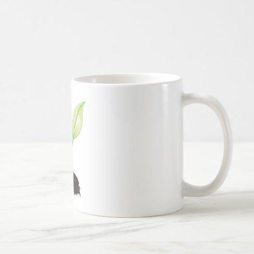 Plante la hoja de la tierra verde del almácigo del tazas de café