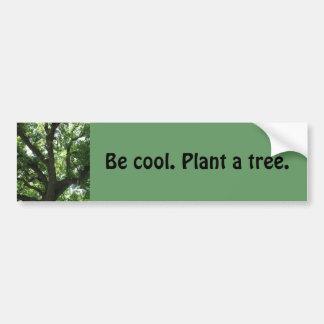 Plante pegatina para el parachoques de un árbol etiqueta de parachoque