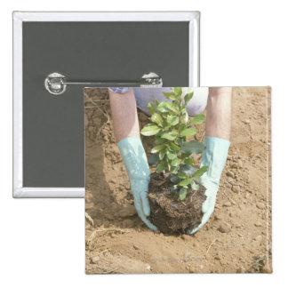 Plante un árbol el Día de la Tierra Pin Cuadrado
