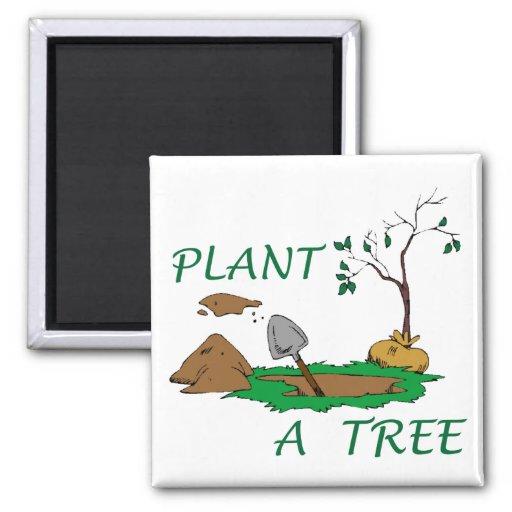 Plante un árbol imán cuadrado